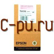 11Epson C13T603600