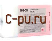11Epson C13T603C00