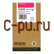 11Epson C13T603B00