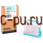 11Epson C13T605500