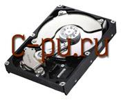 11500Gb SATA-II Samsung SpinPoint F3 (HD502HJ)